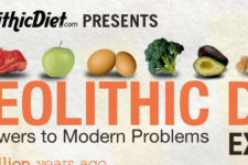 The Paleolithic Diet Ancient Answers to Modern Problems Explained